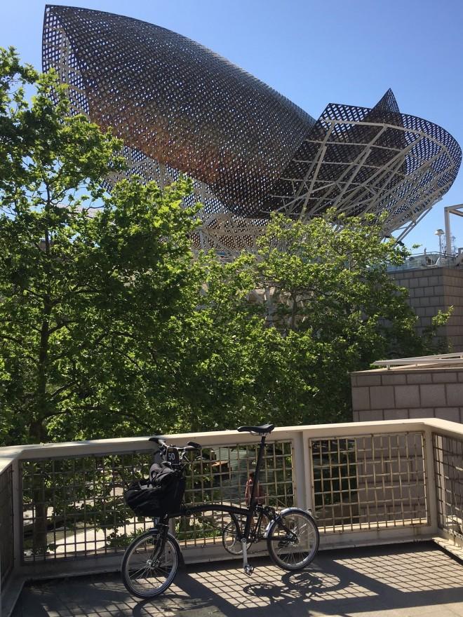 Barcelona Whale